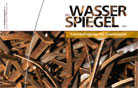 Wasserspiegel 2010 (in German)